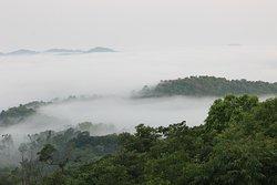 trek path - view