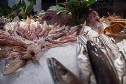 Fresh fish at our Markata e Peshkut Chateau Linza Restaurant