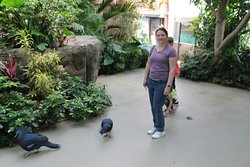 I believe this was the tropical rainforest room