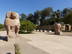 El Ashmunein Baboon statues