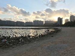 砂浜、夕暮れ