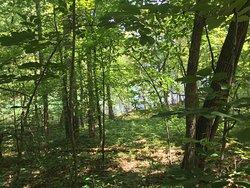 Jackrabbit Mountain Bike & Hiking Trails