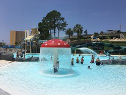 My Granddaughter loved the Shipwreck Water Company pool where there are multiple water slides, water cannons and the gigantic tipping bucket that dumps tons of water on you!