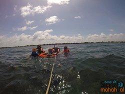 desde texas hasta mahahual para hacer snorkel
