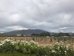 Corrales Winery