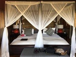 Paradise by The Zambezi
