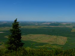 Steptoe Butte state park view to the northwest.