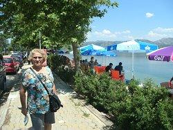 Eğirdir-Göl-Yarımada çay bahçeleri
