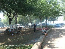 Eğirdir-Yarımada Piknik alanı