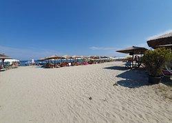 Olympic Beach