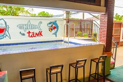 Welcome to the Shark Tank! Perfect to take a dip on a hot afternoon or sit by the poolside and enjoy a cool drink!