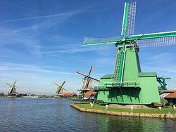 Hop On Hop Off Holland