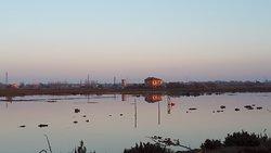 La Salina di Comacchio