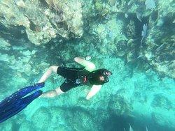 Snorkeling the reef off coast of Isla de Mujeres