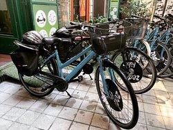 Zedbike Rent a Bike