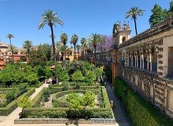 Jardines de los Reales Alcázares