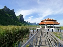 Bueng Bua Nature Observation Center