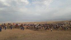 Big group camel ride tour in Agafay desert