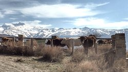 Sixthrills Road Trip Sierra Nevada