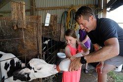 Hansen's Farm Fresh Dairy