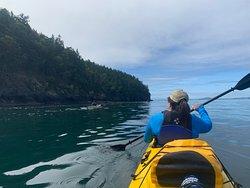 Awesome Kayaking Trip