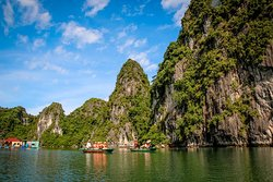 kayaking Signature Royal Cruise