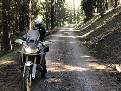 Somewhere in the forests of Eastern Oregon.