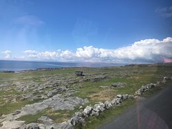 Beauty Of The Burren Walks