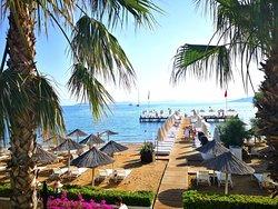 Voyage Torba beach
