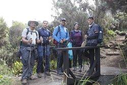 Kilimanjaro Trial condition Lemosho route