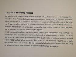 Seccion 6 El último Picasso