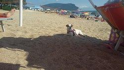 Giugno al crazy beach