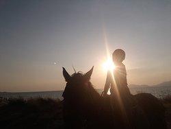 Fotostopp auf einem Hügel am Strand vor dem Sonnenuntergang