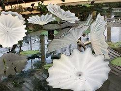 Heavenly Kew Gardens and Chihuly's glass sculptures
