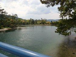 大天橋からの景色。キレイな水面です。