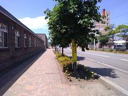 余市蒸溜所の沿道