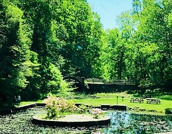 Pond on the premises with picnic tables and a bridge behind it.