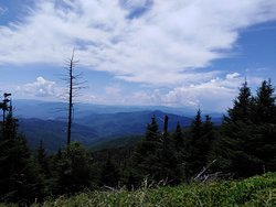 The view from Clingmans Dome