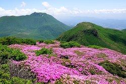 中岳から白口岳、大船山を望む。