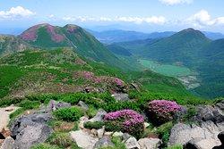 中岳から三股山、坊がツル、平治岳
