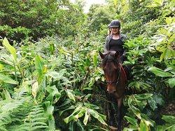 The 'Jungelpart' of our Halfday ride Pinhal da Paz