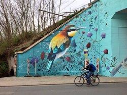 Ontdek Leuvense street art op de fiets