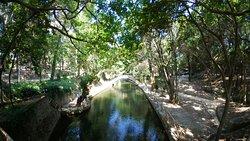 Parc Rodini