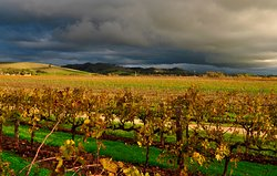 Stunning views of the Barossa Ranges in winter