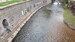 particolari sul fiume