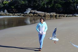 on the move at Freshwater Beach,