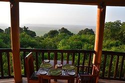 Photos from the Mitra group safari in Jun 2019
