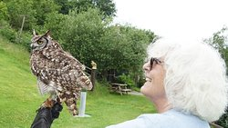 My wife with one of the owls