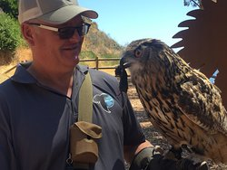 Dave, with an owl, who happens to be holding a dead mouse.
