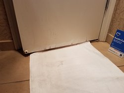 Delaminated bathroom door. The fix was some paint slopped on the damaged wood.